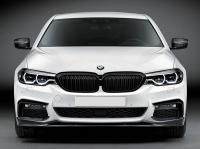 Карбоновая губа BMW G30 M-tech 17